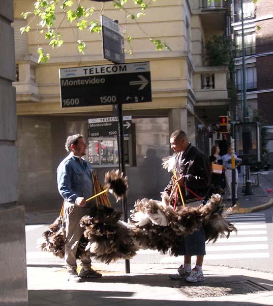 http://b.davoust.free.fr/argentina/P9303360rs.jpg